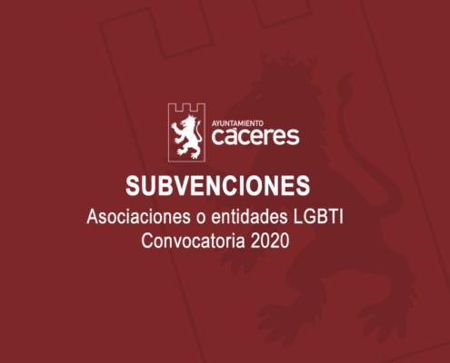 SUBVENCIONES ASOCIACIONES O ENTIDADES LGBTI, CONVOCATORIA 2020