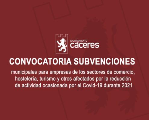Subvenciones Covid 19 - 2021