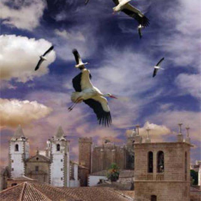 Cáceres, Una Experiencia Monumental