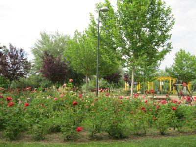 Parque Ronda I