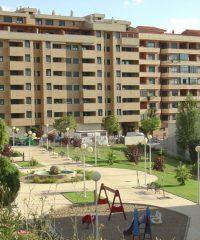 Parque el Vivero