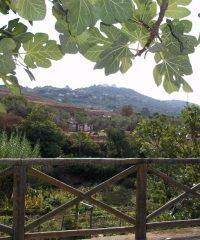 Mirador Fuente Fria (Viewpoint)